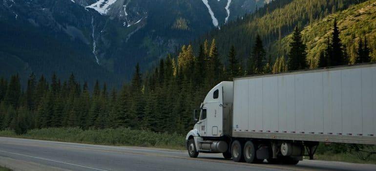 white-dump-truck-near-pine-tress-during-daytime
